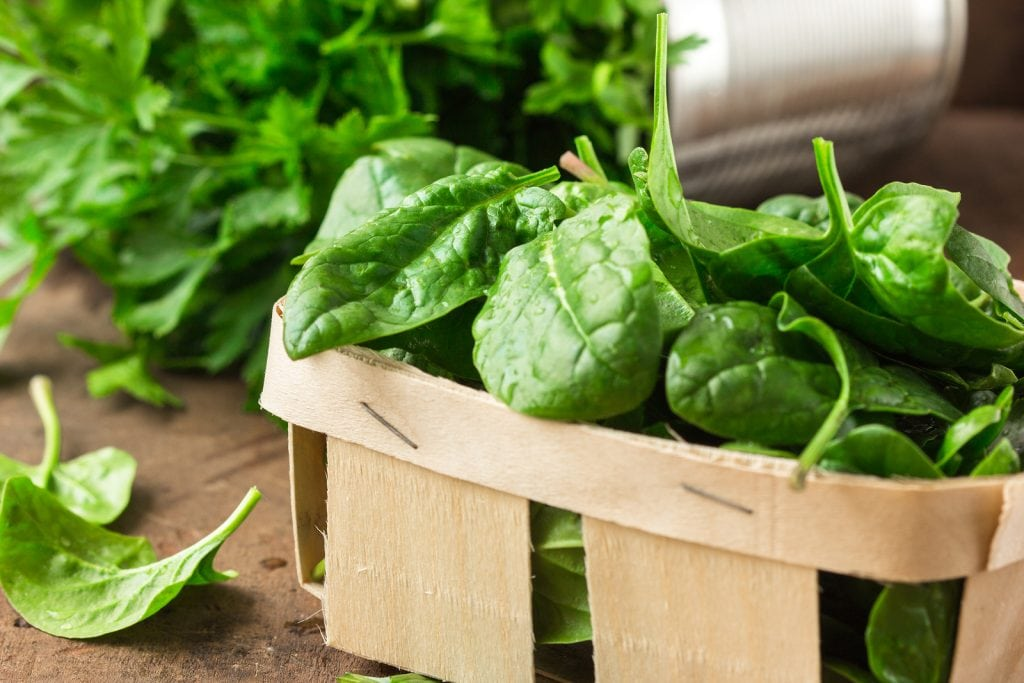 fresh spinach is full of protein and calcium